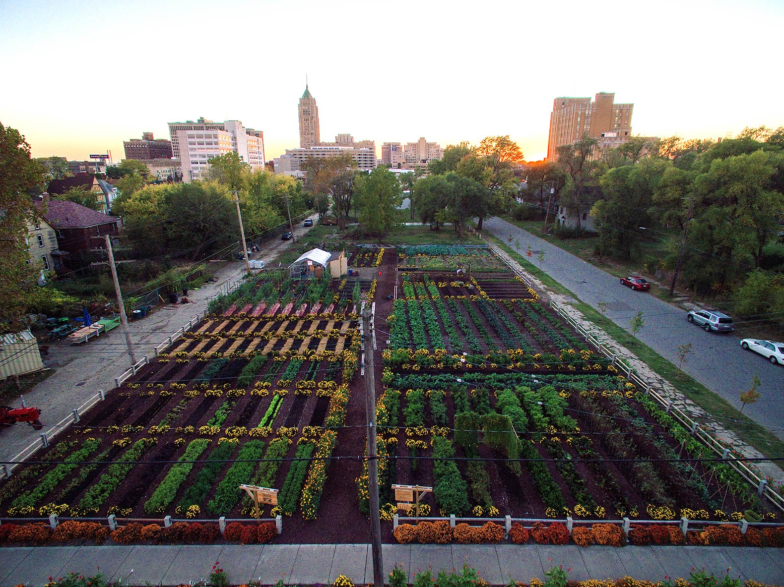 michigan-urban-farming-initiative-garden